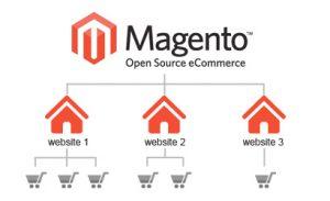 Magento Multi Store